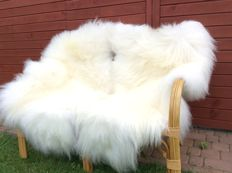 Pair of extra large Icelandic, long-haired sheepskins - Ovis aries - 130 cm (2)