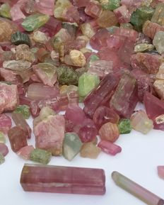 Large lot of rough multicolor tourmaline - 550g - 2750ct