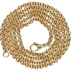14 kt Yellow gold anchor chain necklace – Length: 54 cm