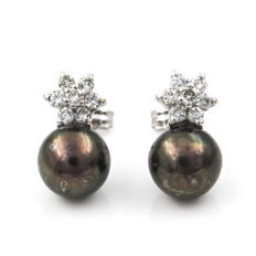 18 kt (750/1000) yellow gold - Earrings with star motif - 0.70 ct diamonds - Tahitian pearls - Earring height: 14.30 mm