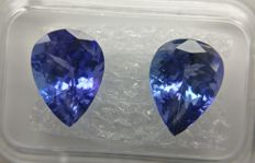 Couple Tanzanite Purplish Blue total 5.85