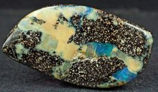 Natural Australian Boulder Opal Cut Stone - 29 x 15 x 6 mm - 25.00 ct