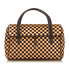 Louis Vuitton - Damier Sauvage Lionne
