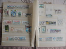 French Southern and Antarctic Lands 1979/2000 - collection on binder sheets