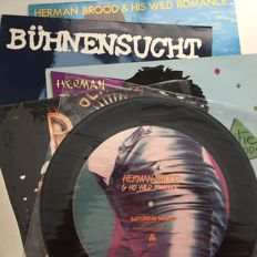 Herman Brood, lot of 5 records including German import LPs and rare UK picture label 12""
