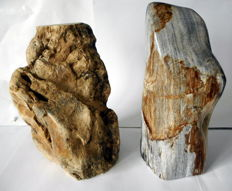 Decoration; 2 objects of petrified wood - 23 and 25 cm - 2.8 and 3.3 kilos