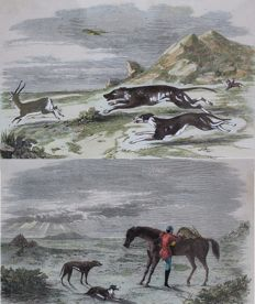 "2 Gorgeous antique English hunting wood engravings: ""The Chase"" and ""Preparing to return""."