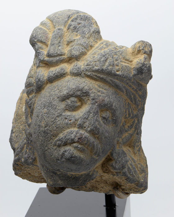 A Gandhara Schist Head of a Devotee - H. 7.62 cm (3 inches) without mount