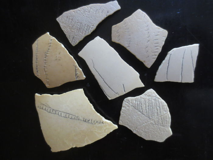 Collection of Five Decorated Neolithic Eggshells,  Western Sahara - 3cm - 5cm (5)