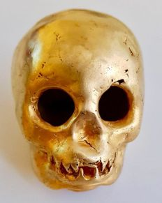 Vanitas Vanitasis , Tumbaga Gold artifact , Colombian , Tairona Culture  ,  56 x 51 x 61 mm ,  85,25  grams, , An indian native skull
