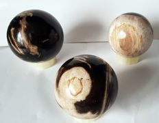 Large decorative petrified wooden balls - 90 to 105 mm 2733 grams