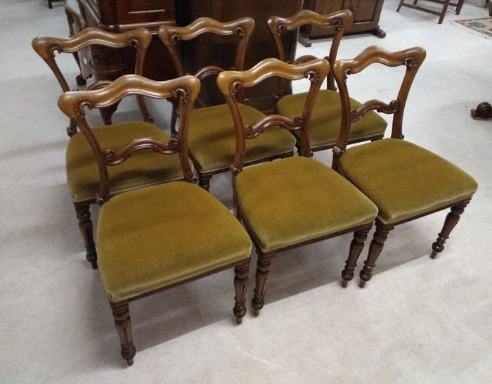 6 Victorian Walnut antique chairs - moquette velvet - England - circa 1860 - 6 Victorian Walnut Antique Chairs - Moquette Velvet - England