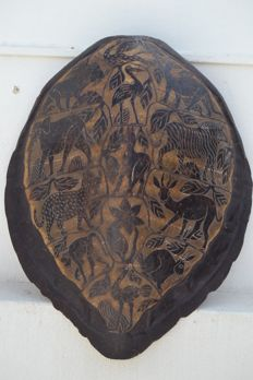 Fine antique Sea Turtle shell, with low-relief wildlife carvings - Cheloniidae sp. - 68 x 60cm