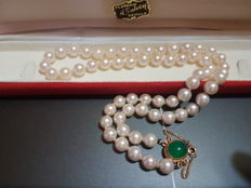 Necklace 61 Akoya Cultured Pearls 8-8.5 mm
