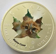 Canada - 5 dollars 2017 'Cute Kittens – Main Coon' colour edition - 1 oz silver