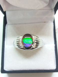 Very rare indeed. Canadian AA Grade Ammolite 9mm x 7mm dress ring. Wonderful natural display of colours.
