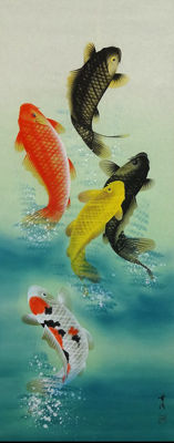 Very beautiful hand painted scroll of carp - Japan - Late 20th century