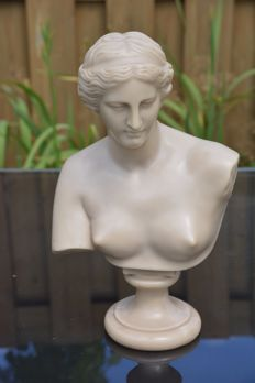 Heavily polished polystone bust of Venus, signed