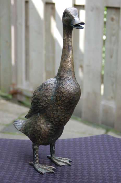Solid bronze - highly detailed - life-size, life-like duck, so called runner duck