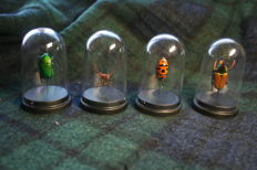 Interesting collection of unusual, exotic Insects in globes - Hemiptera and Hymenoptera - 70mm  (4)