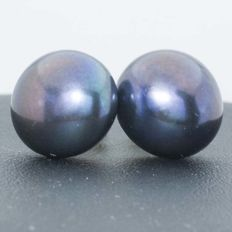 18 kt gold earrings with cultured black pearls 14 mm