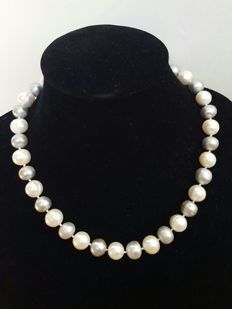 925 silver – Long necklace composed of freshwater cultured light grey and white pearls – Length: 48 cm