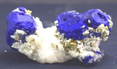 Royal Blue Lazurite Crystals with Pyrite & Calcite - 75 x 37 x 30 mm - 89 gm