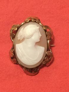 Cameo (8 kt gold) with brooch and pendant
