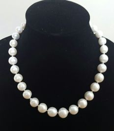 925 silver – Necklace composed of large cultured white freshwater pearls – Length: 47 cm