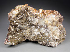 Pyrophyllite crystal 'flowers' with muscovite - 10x6,3x4 cm - 450 gr
