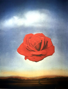 Salvador Dalí (after) - Meditative Rose