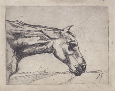 """Gretha Pieck (1898-1920)- """"The old horse"""""""