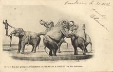 CIRCUS BARNUM & BAILEY 10 x-Complete series of 10 cards-period:ca 1900