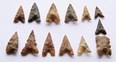 Lot with 13 Neolithic arrowheads - 15 - 22 mm (13)