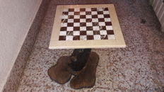 Art of Recycling - Chess board