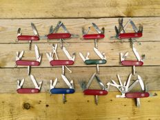 Collection of 12 Victorinox Pocket knives