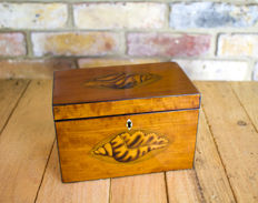 A Georgian satinwood twin tea caddy - England - circa 1780