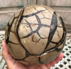 "Fine Septarian sphere, with ""lid"" - 15.3 cm - 4.22 kg"
