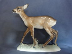 Rosenthal - Large Porcelain Figurine 'Motionless Deer' Model No.: 821 by W. Münch
