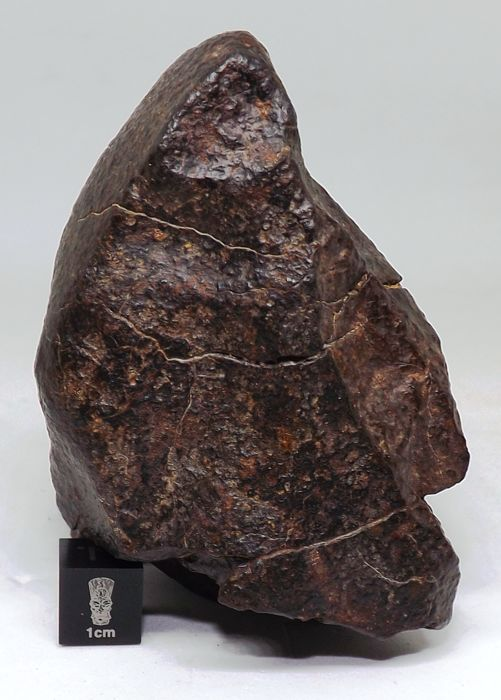 Unclassified NWA Ordinary Chondrite Meteorite - 190.1 gm