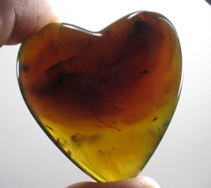 Green polished amber - 49 x 50 x 20 mm - 24 g