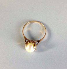 Gold ring with pearl - Size: 16.3 (51)