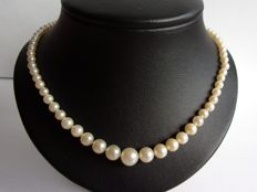 Fresh water pearl necklace with 18 kt white/yellow gold clasp