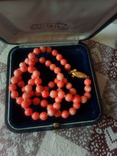 Pink coral necklace with 18 kt gold clasp, guaranteed, clasp made by a goldsmith by hand and not hallmarked