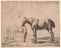 Dirk Stoop ( 1610 - 1686 ) - Bridled horse bound to a post - 1651