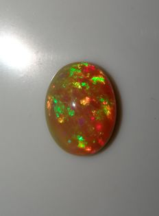 Natural Welo Opal - 16x12x7 mm -  6.43 ct