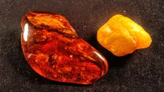 Baltic amber lot - Cognac and Egg yolk colour -  58gr (2)