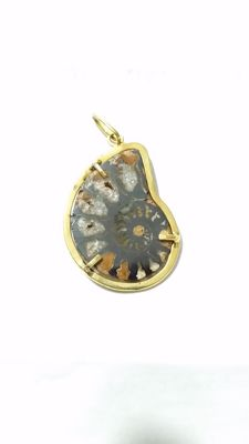 Pendant in 18 kt gold with prehistoric fossil, handmade - 3.5 x 2.3 cm, 5 mm thick ***no reserve price***