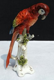 Capodimonte Naples - parrot - on porcelain hand painted trunk