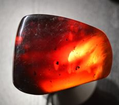 Fluorescent blue amber from Sumatra - 81,7 x 60,5 x 29,5 mm - 93,4 g